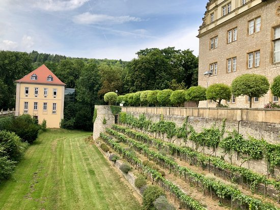 Weikersheim Castle The French Garden Small Vineyard Picture Of