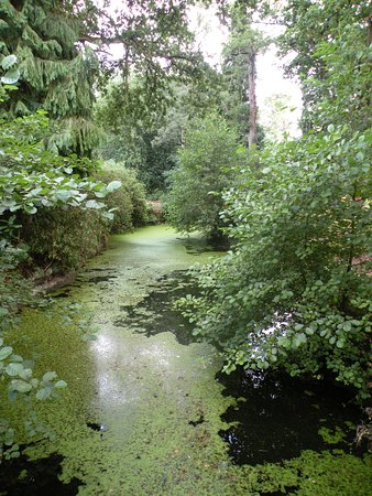 Dorridge, UK: Stream and lake in back