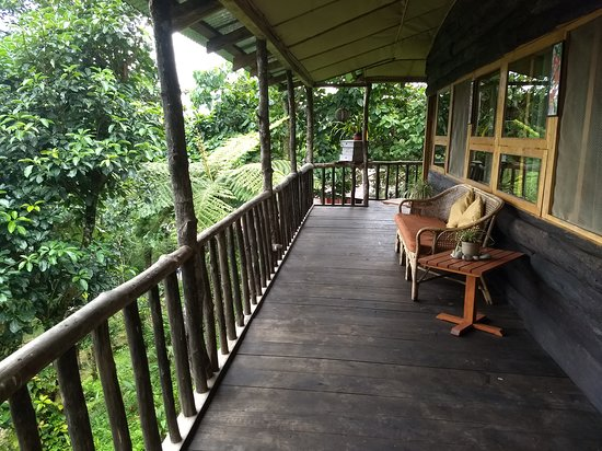 Mangan, India: The front area of our treehouse room