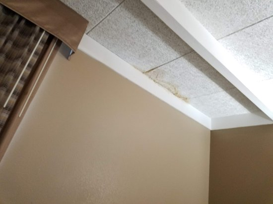 Wickliffe, OH: ceiling in the smelly room