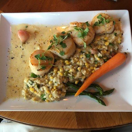 The Mews Restaurant & Cafe: photo0.jpg