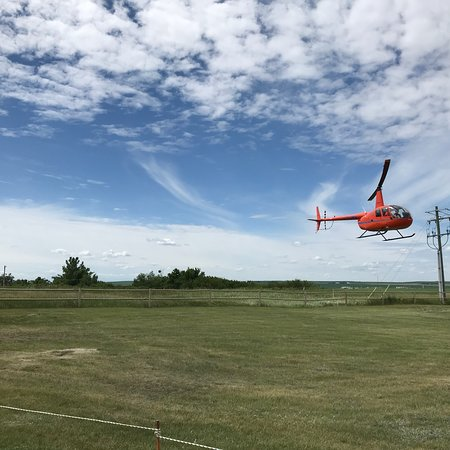 Drumheller, Canada: Mountain View Helicopters