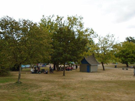 Hume Park: Picnic Area
