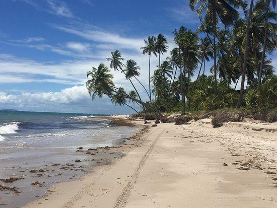 Jaguaripe, BA: Praia dos Garcez