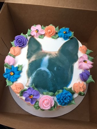 Our dog on a cake!