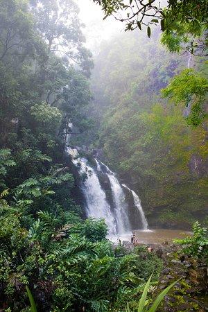 Makawao, هاواي: Waikani Falls