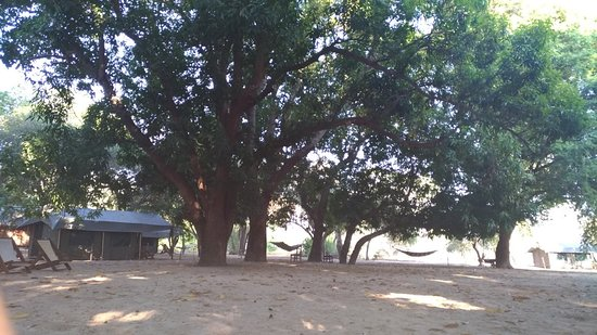 Bekopaka, Madagascar: P_20180806_081151_large.jpg