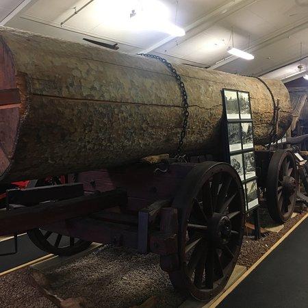 Matakohe, Selandia Baru: What a museum
