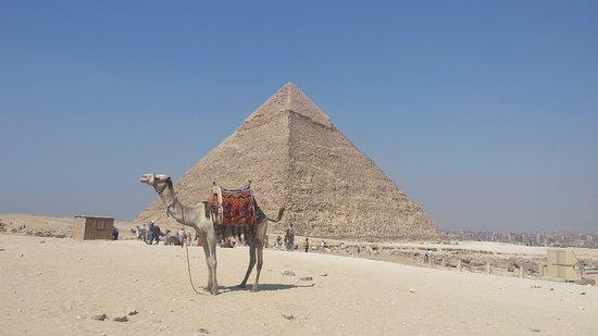 Book Tour Egypt: piramidi