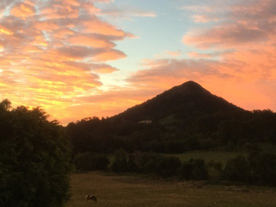 Mount Cooroy 사진