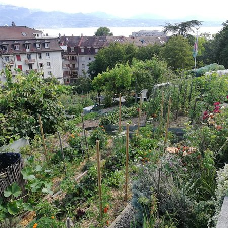 Jardin Botanique Lausanne 2019 All You Need To Know Before You Go