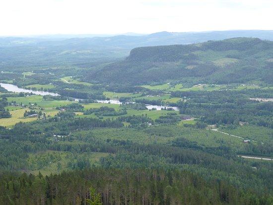 Bergasens utsiktstorn