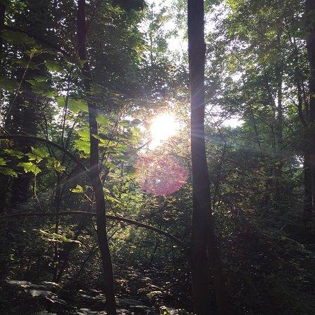 Natuurgebied Beekvliet: photo7.jpg