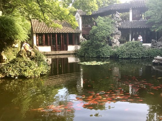 Sunny Tours Shanghai