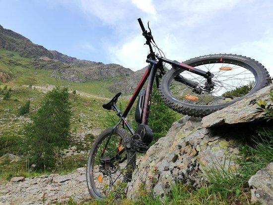 E-Bike-Verleih Wiedemair