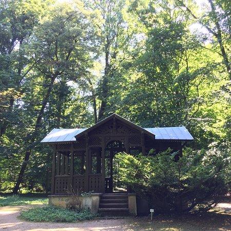 Zirc, Венгрия: Arboretum Garden