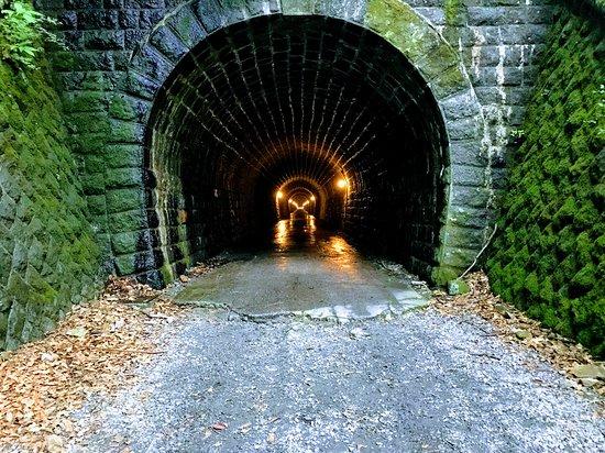 Mt. Amagi Tunnel (Former Amagi Tunnel)