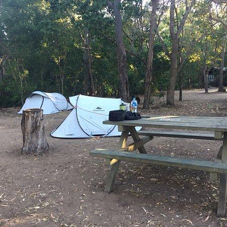 Simple, beau mais pas de kangourous