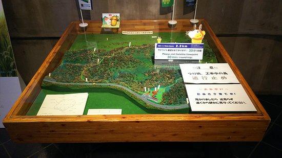 Kushiro Shitsugen Observatory Boardwalk: 湿原展望台木道のジオラマの右下に、たぬき子育て中 !