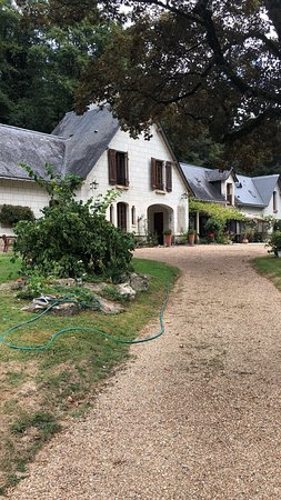 Les Rosiers sur Loire, France: photo2.jpg
