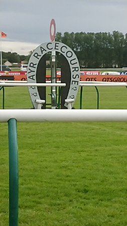 Racecourses | Martin Bishop Racing |Ayr Race Track
