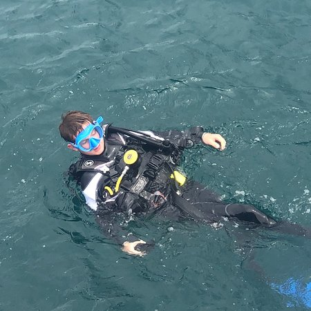 Dolphin Divers