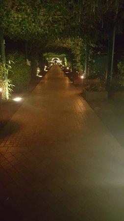 MarePineta Resort: IMG-20180812-WA0019_large.jpg