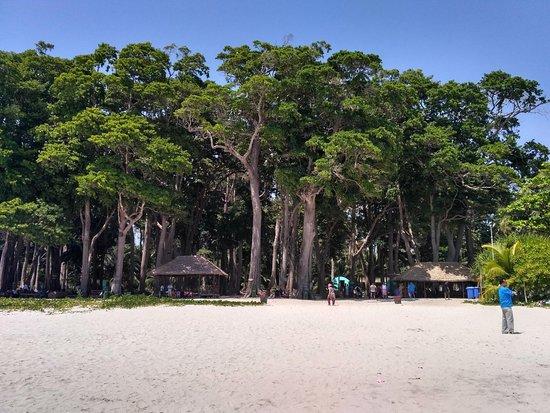 Radhanagar Beach: Such a scenic beach