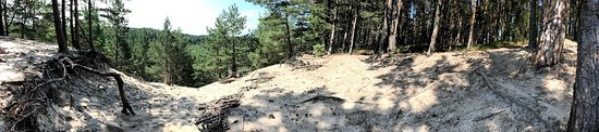 Nica, Latvia: View from the highest Latvian dune - Pūsēnu kalns