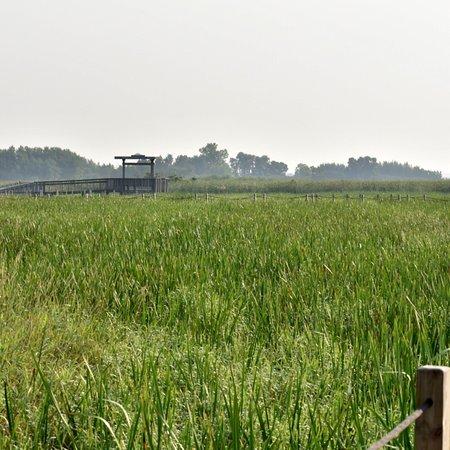 Horicon National Wildlife Refuge: photo1.jpg