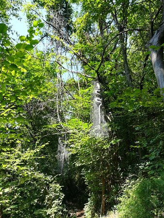 SOJO PARK - Art and Nature: IMG_20180812_121740_large.jpg