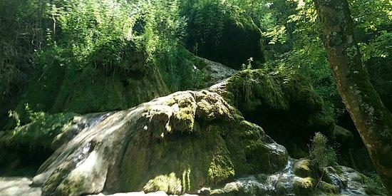 Roquefort-les-Cascades照片