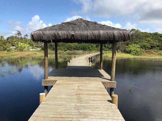 Lobby - Picture of Pousada Sitio da Bia, Marau - Tripadvisor