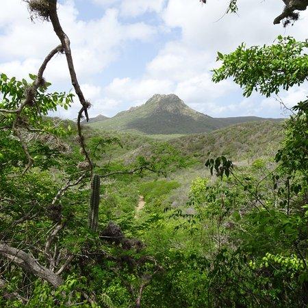 Christoffel Nationalpark, Curaçao: photo0.jpg
