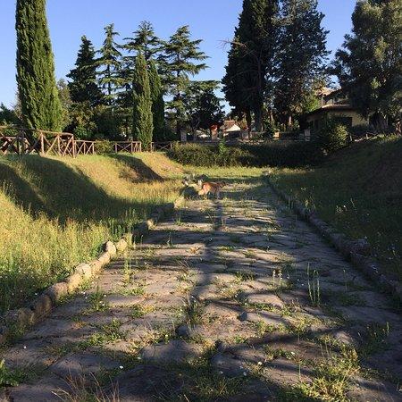 Afkoeling vlakbij heet Rome
