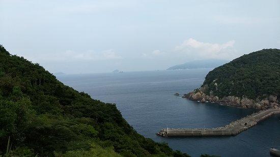 Ugurushima Island: The breakwater. Most of the island is overgrown.