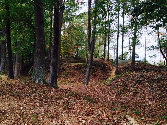 Hamilton, NC: Trenches along the top of Fort Branch, looking toward the river.