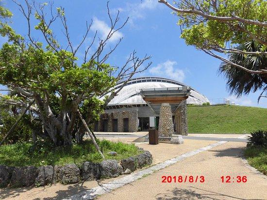 Taman Amami