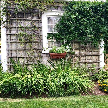 Sherburne Inn Nantucket: photo3.jpg