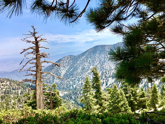 Mount Baldy, CA: View from one of the hiking trails