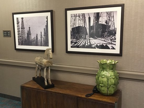 Residence Inn Houston Downtown/Convention Center: Even some nice pictures in the hallway