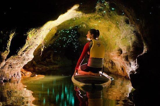 Rotorua Twilight Paddle-Boarding Tour...