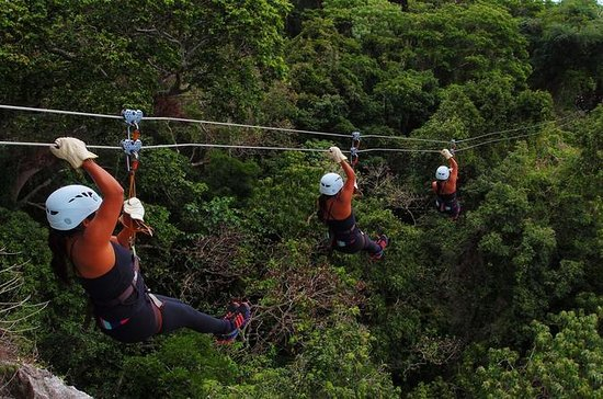 Half Day Nadi Zip Line Tour