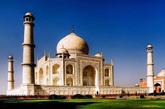 Agra Taj Mahal dagstur med rød og hvit...