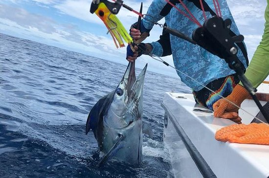 Pesca sportiva in mare aperto