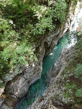 Friuli Venezia Giulia, Italy: 20180812_115335_large.jpg