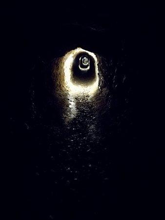 Bilde fra Gorno