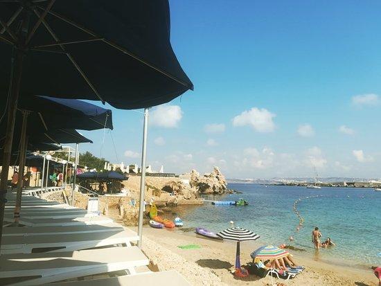 Paradise Bay Foto