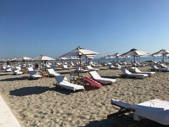 MarePineta Resort: Il beach staff del MarePineta alle 840 del mattino ha già predisposto tutti i teli in attesa deg