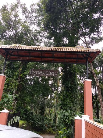 Kalasa, الهند: Bynekaadu